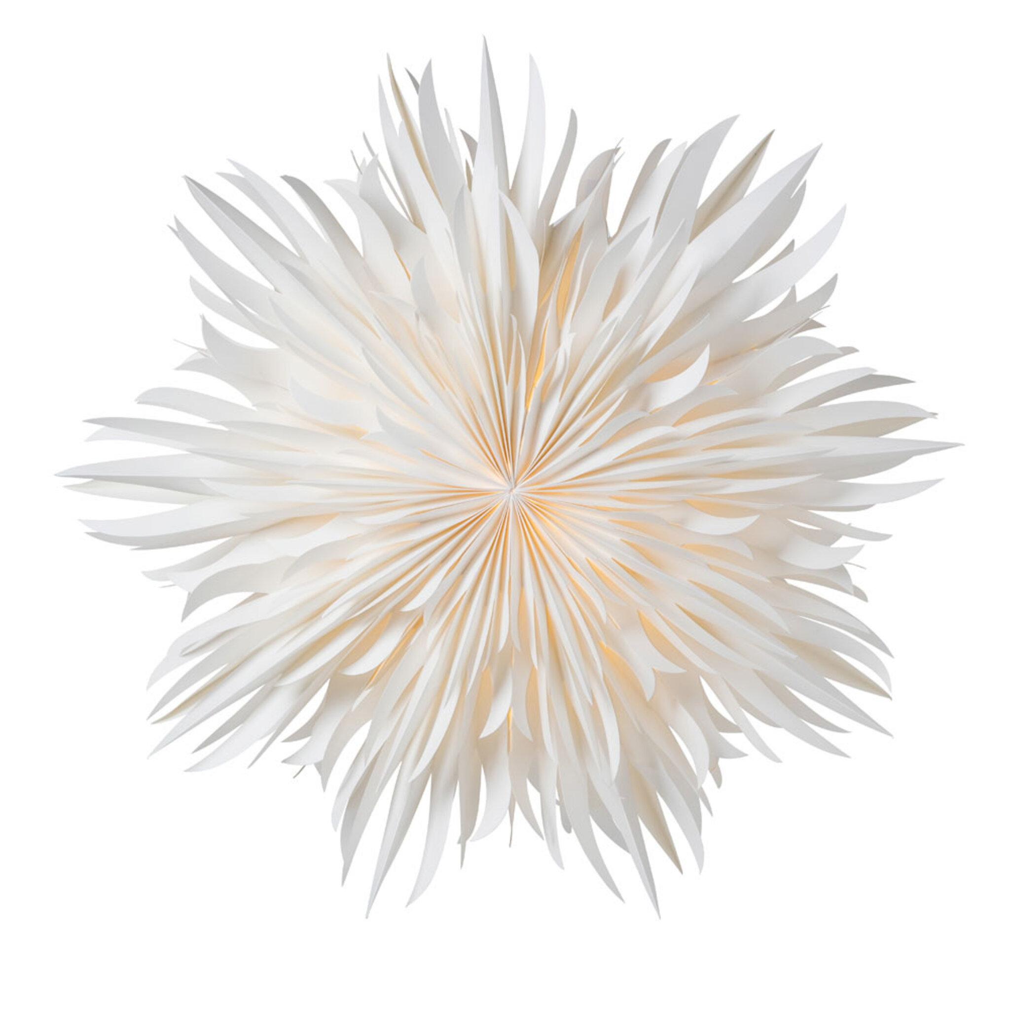 Pappersstjärna Eldig 52 cm