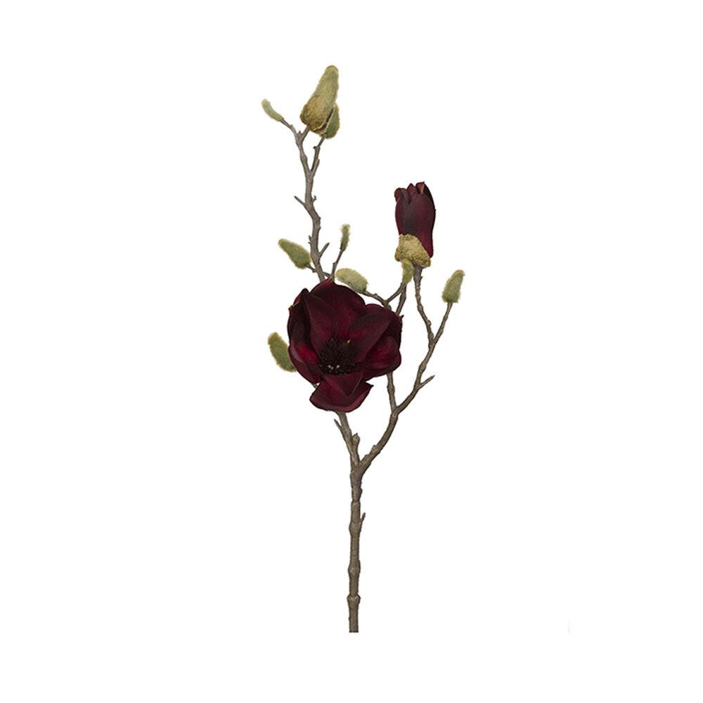Konstväxt Magnolia 60 cm