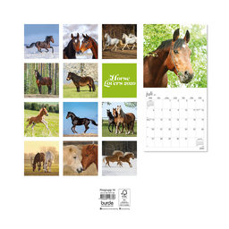 Väggkalender 2020 Horse Lovers