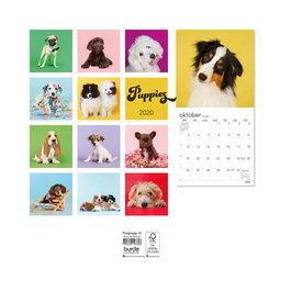Väggkalender 2020 Puppies