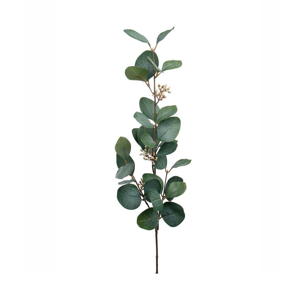Konstväxt Eucalyptus med bär 70 cm
