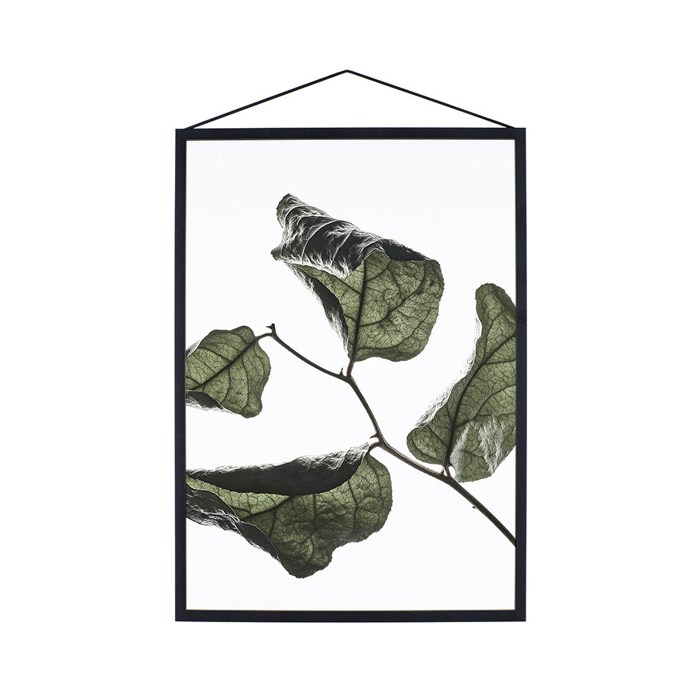 Print Floating Leaves No. 3 A3