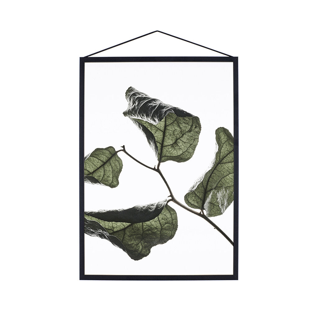 Print Floating Leaves No. 3 A4