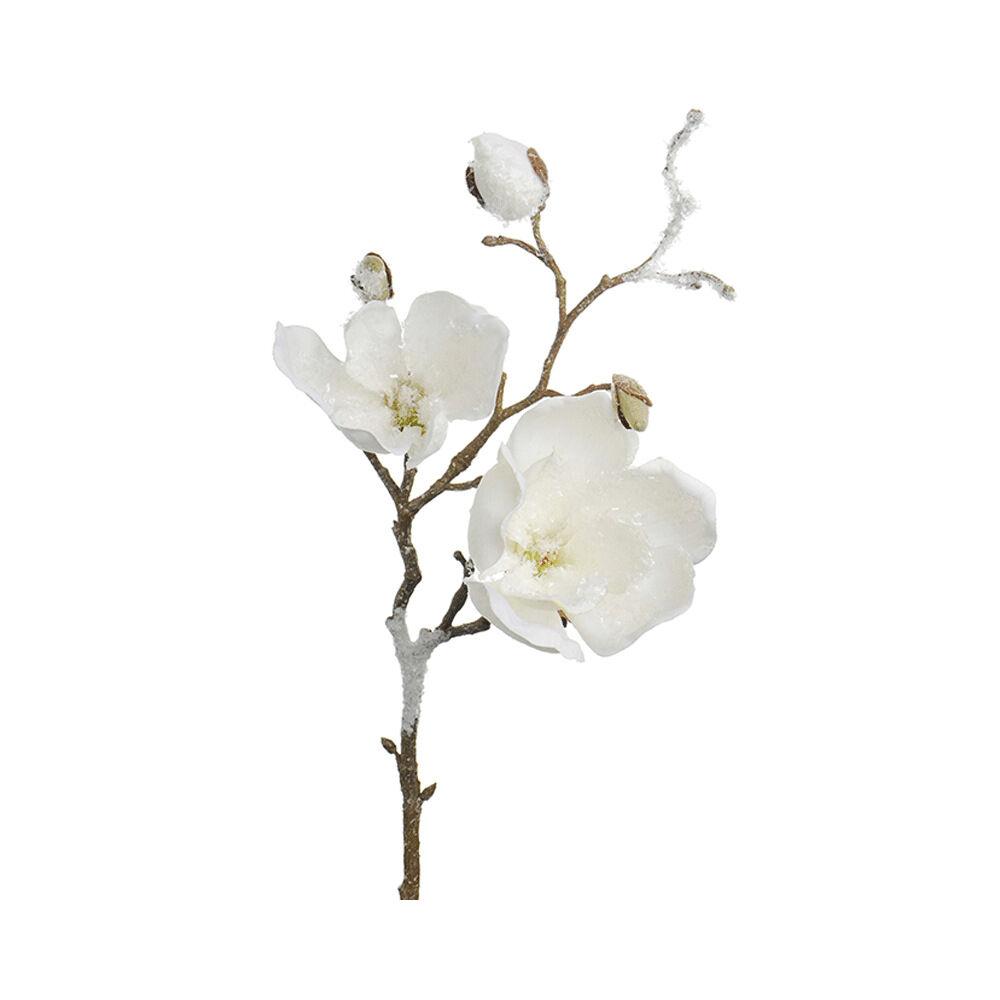 Konstväxt Magnolia med is 50 cm