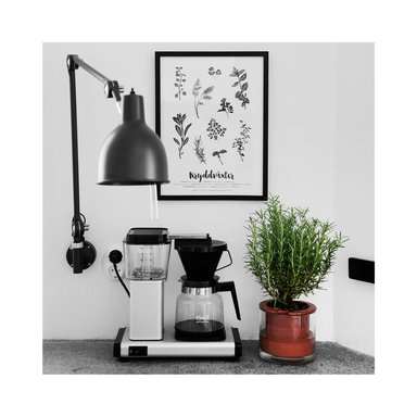 Poster Kryddväxter