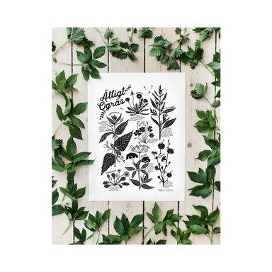 Poster Ätligt ogräs