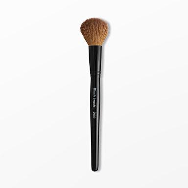 Blush Brush 200