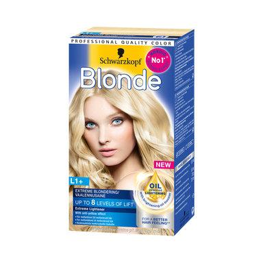 Blonde Blondering