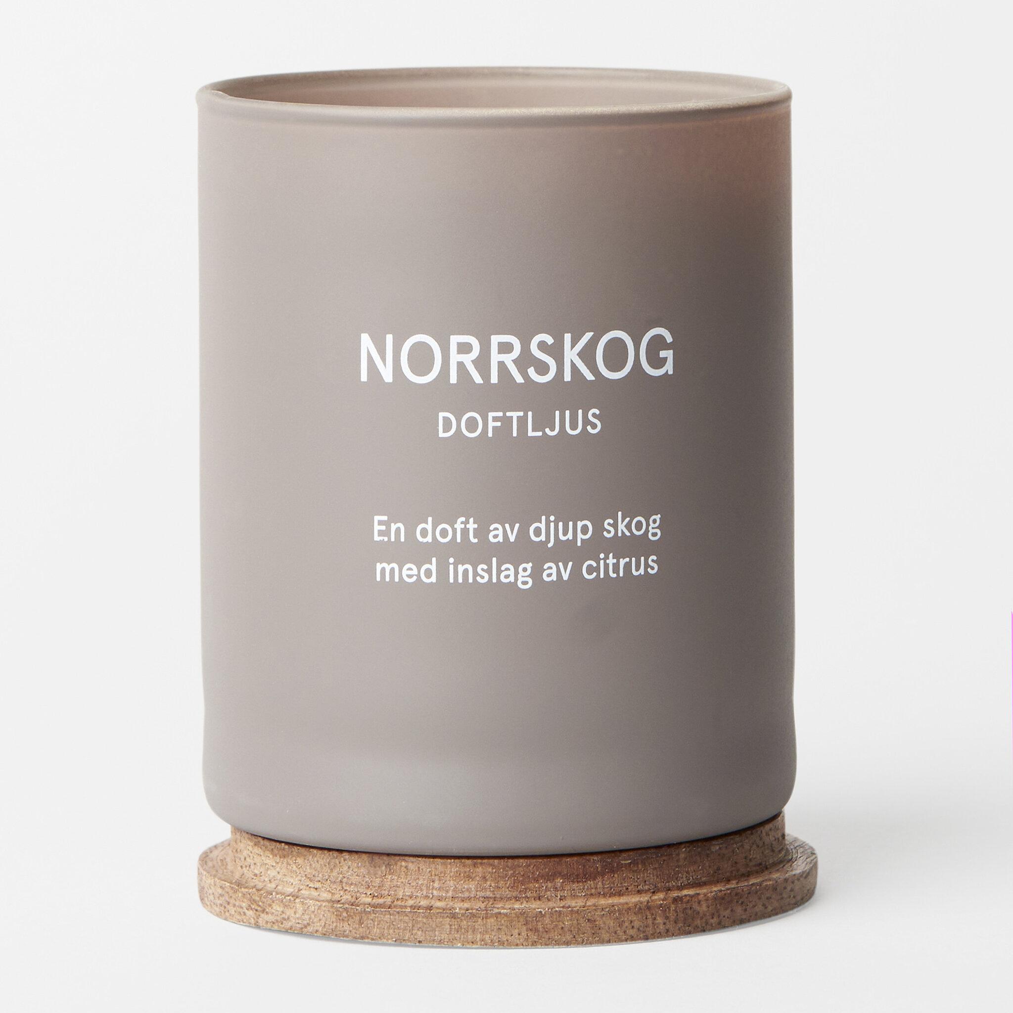 Ljus NORRSKOG, 145 g