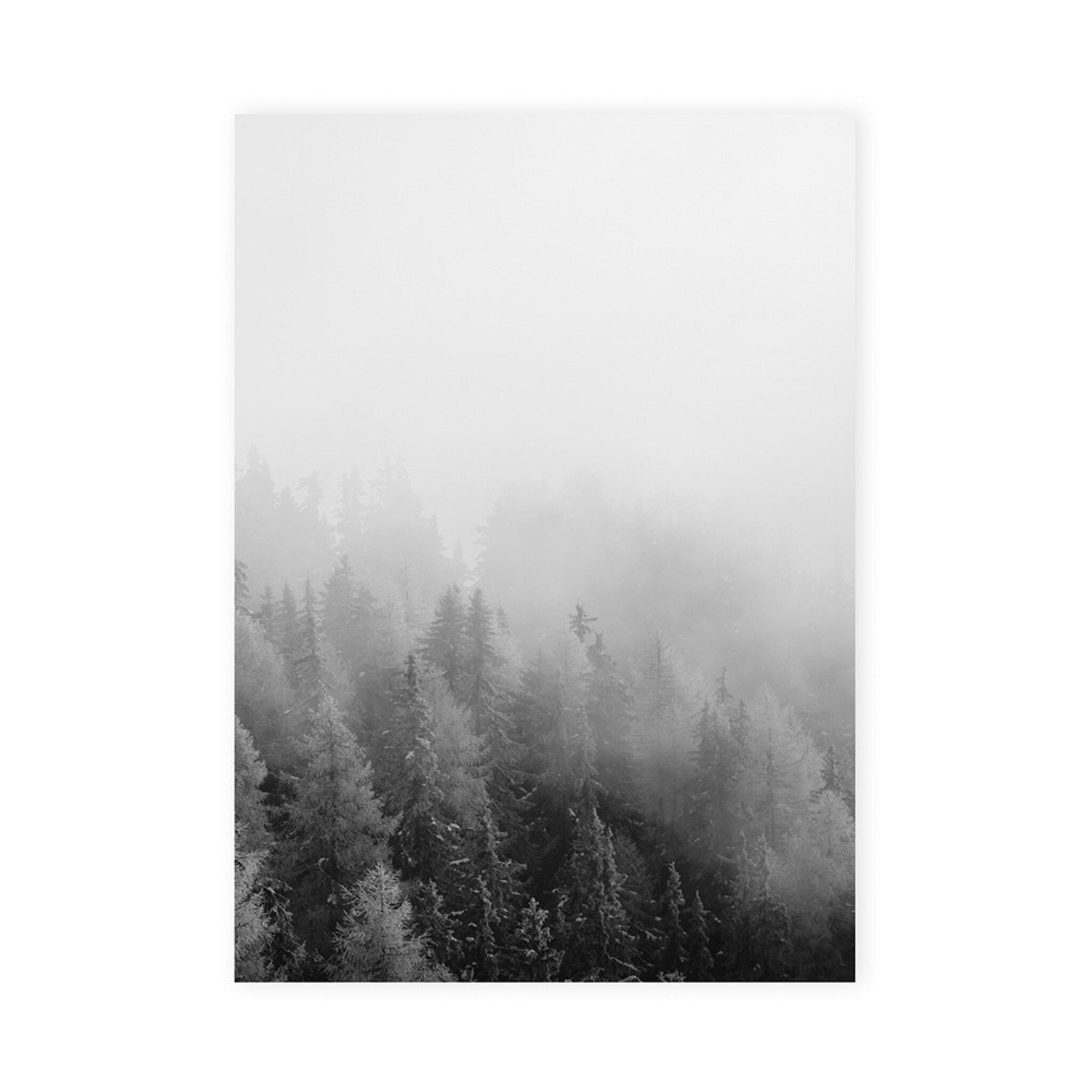 Poster skog, 50x70 cm