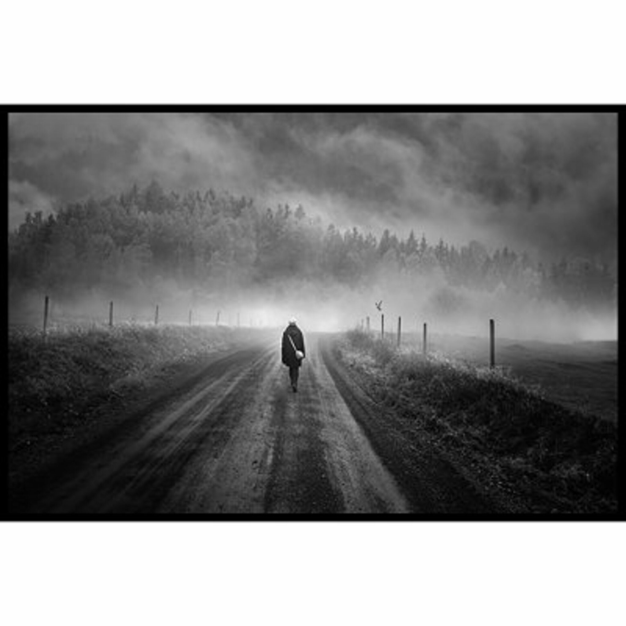 Dark Misty Walk Poster