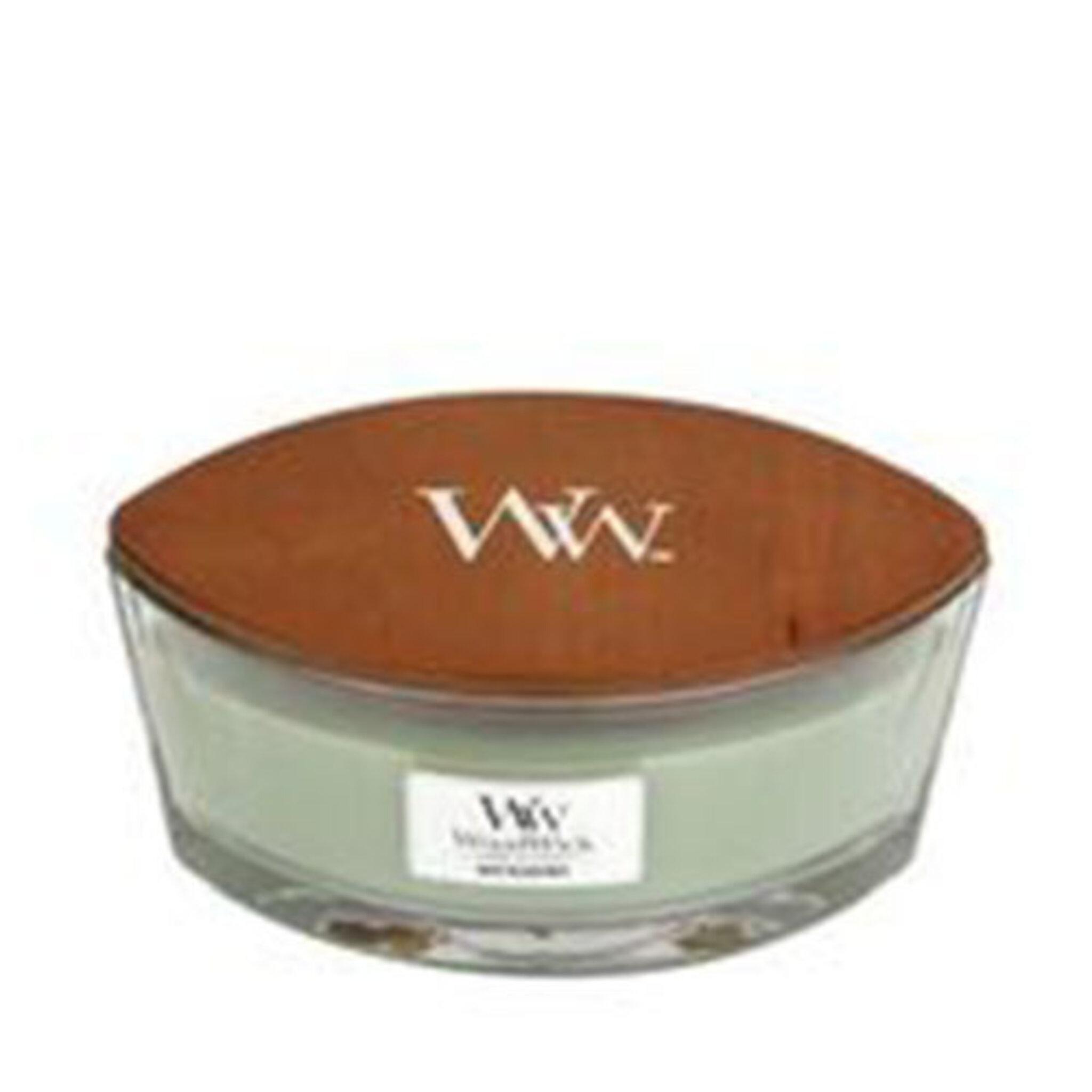 Doftljus, White Willow Moss, Ellipse