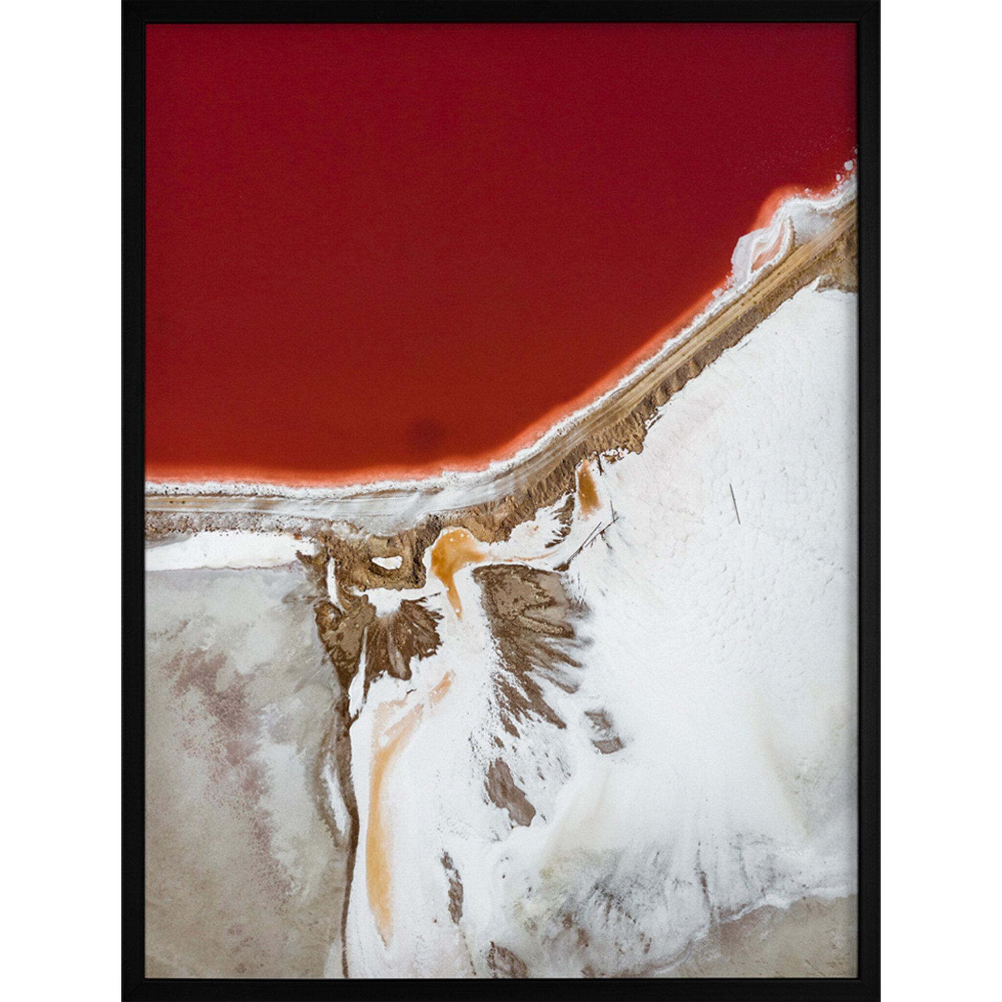 Poster Rödvit Natur